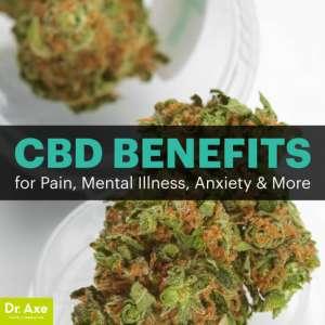 Canabidiol-e-THC-Benefícios-para-Dor-Doenças-Mentais-e-Ansiedade-300x300